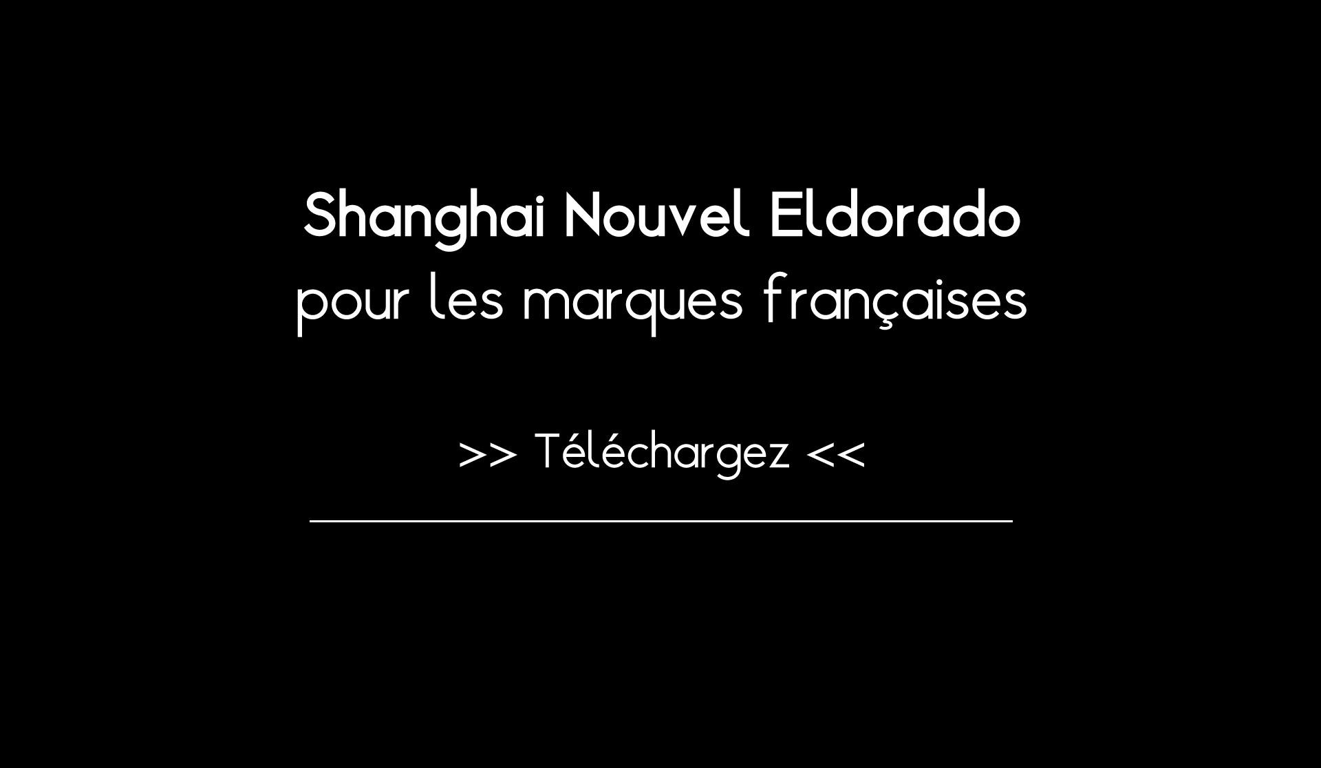 Shangai Nouvel Eldorardo pour les marques françaises : Ebook